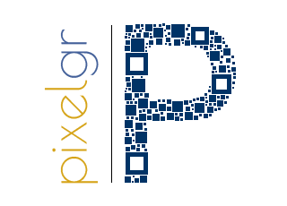 Pixel GR